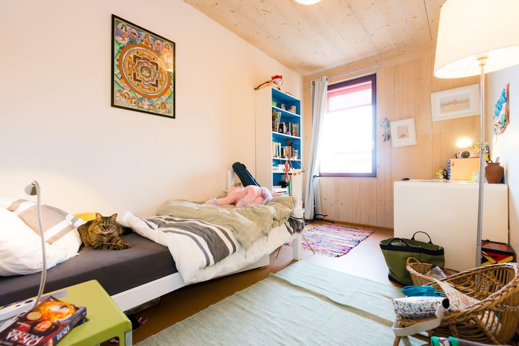 Appartement A Louer Confignon