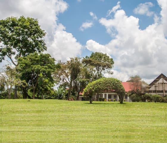 Hillside Garden Retreat_Octavia - Kampala - Apartment