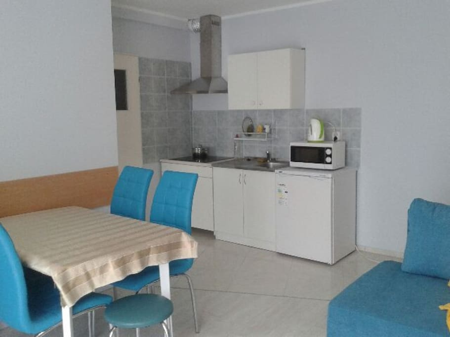 Kitchen in the living- room with induction cooker, a microwave, and a sink. Also cutlery, crockery and pots
