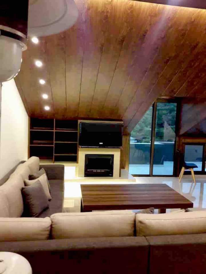 The cozy penthouse apartment