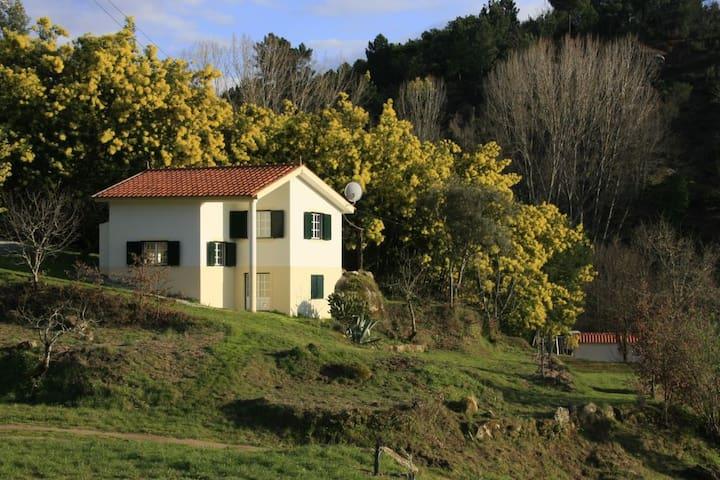Casa Retiro/Quinta do Retiro *** - Covas /Tábua - House