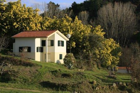 Casa Retiro/Quinta do Retiro *** - Covas /Tábua