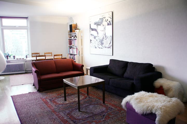 Room for rent in large aptmt Oslo - Oslo - Daire