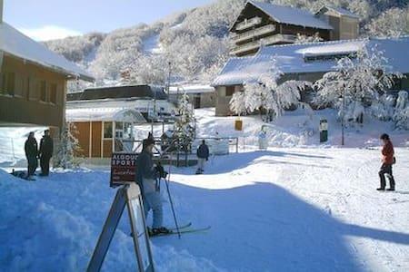 Vercors bel appartement situé au Col de Rousset - Saint-Agnan-en-Vercors