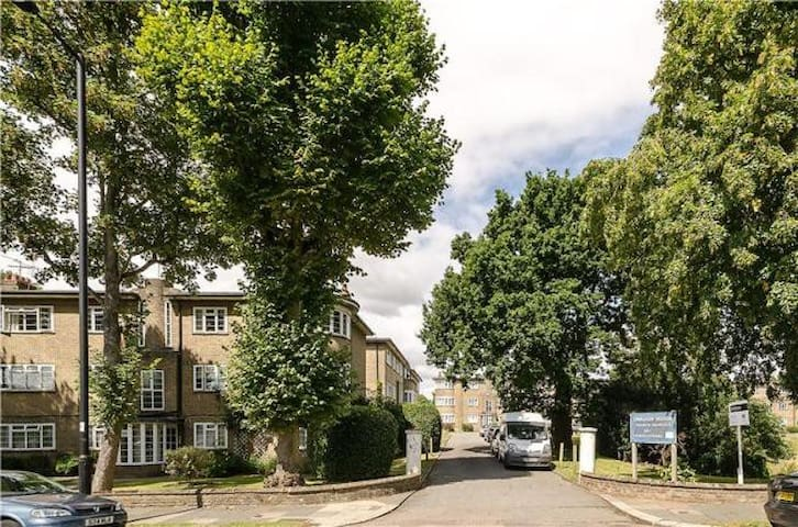 Bright flat in leafy Oakwood - London - Apartment