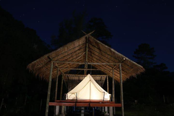 Saranghae Resort Chiang Dao/Safari Tent 02.