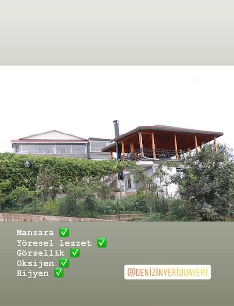 Vip çiftlik evi
