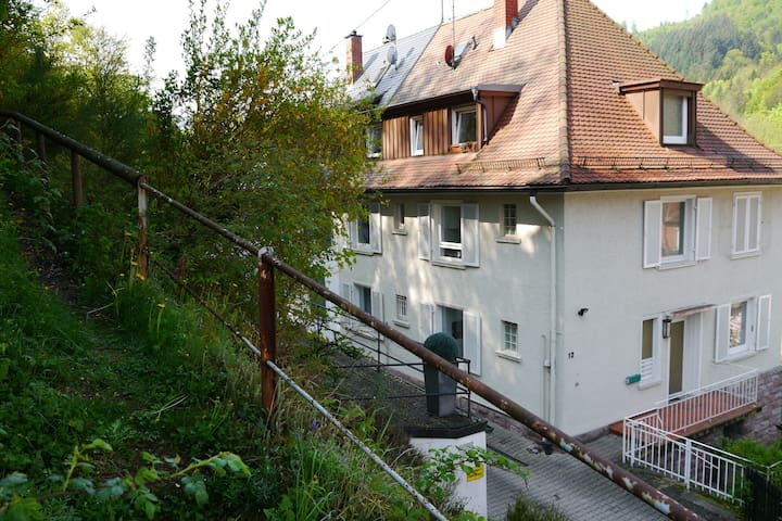 Quiet Studio with garden for two - Baden-Baden - Apartemen