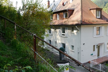 Quiet Studio with garden for two - Baden-Baden - Byt