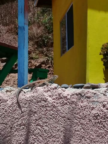 Cabaña #4 in CABAÑAS Don lupe