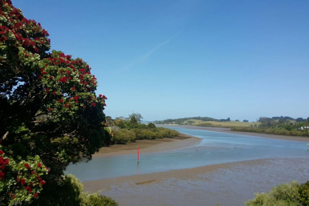 Low tide- when two rivers (Waipapa and Kerikeri Rivers) meet the ocean