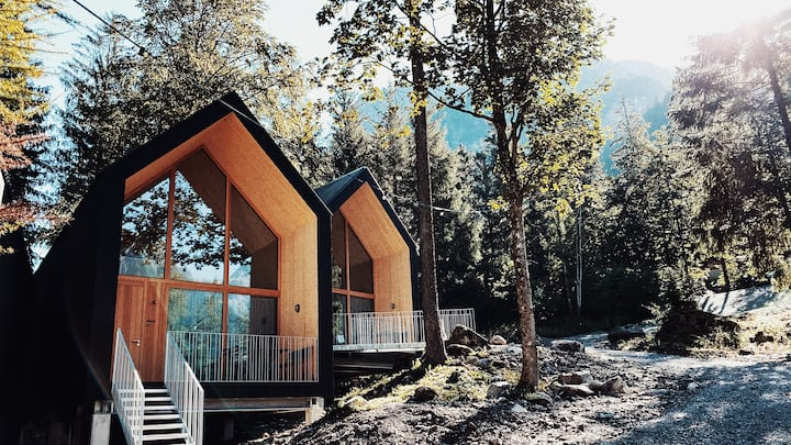 Modern alpine chalets on the edge of the forest