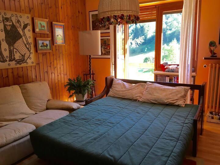 Delizioso appartamento tra le Alpi