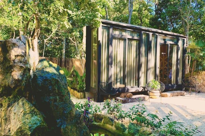 Jaguar Room at Bufo Alvarius