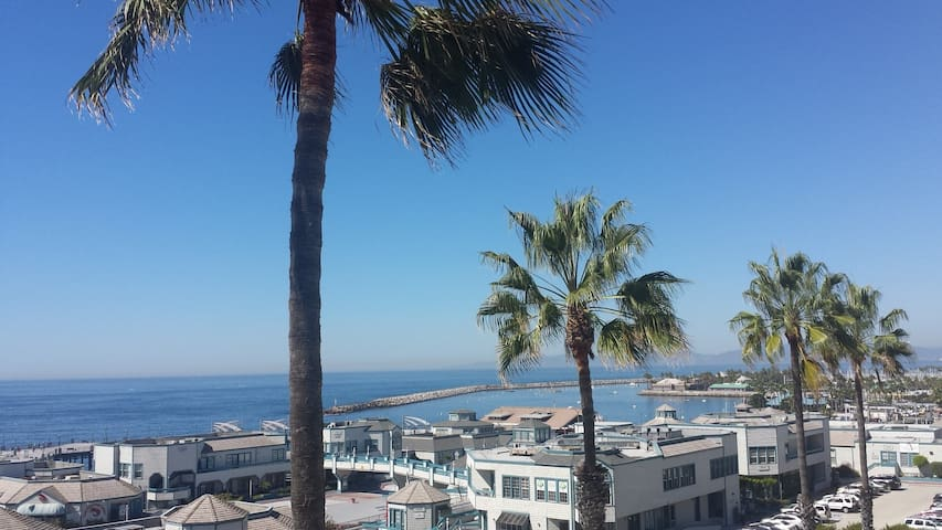 Real ocean view condo for rent! health safe place