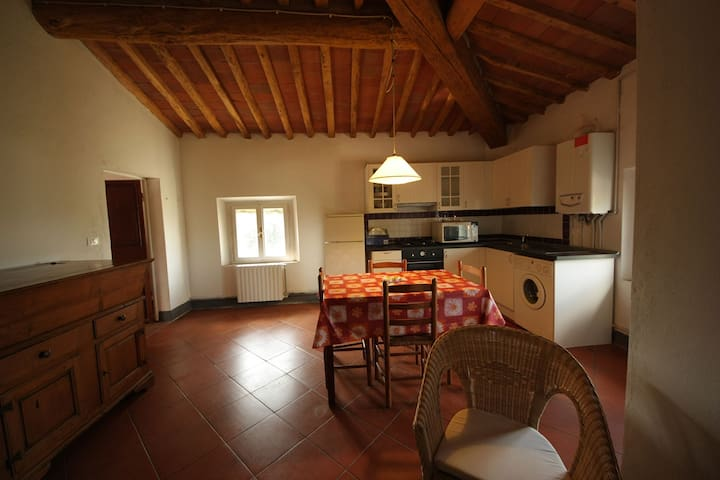 Traditional two-rooms apartment - Crespina