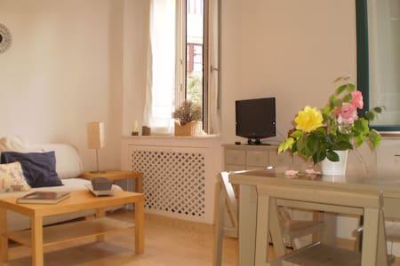 Lovely flat at Segovia city center