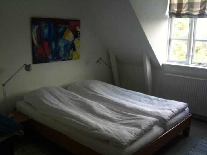 Dejligt lyst værelse i midtbyen