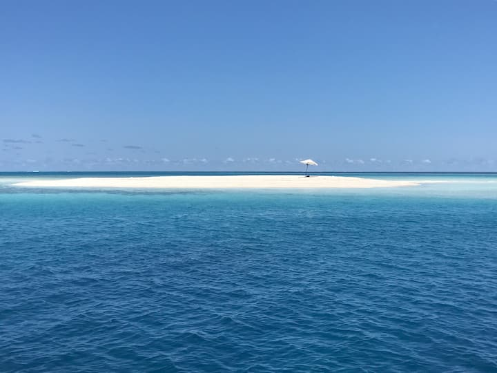KahanbuMaldives ... Tropical life