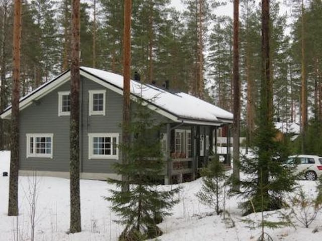Amerocraft Oy - Kerimäki - Hus