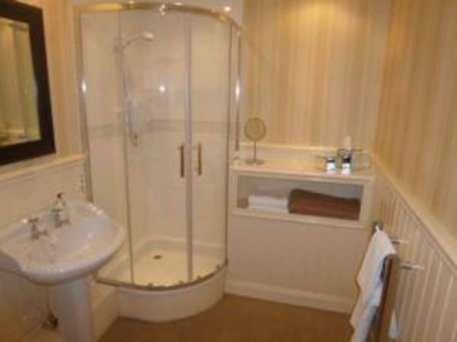 Electric shower and headed towel rail