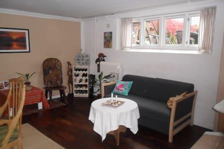 Hyggeligt lyst kælder værelse. - Aarhus - Maison