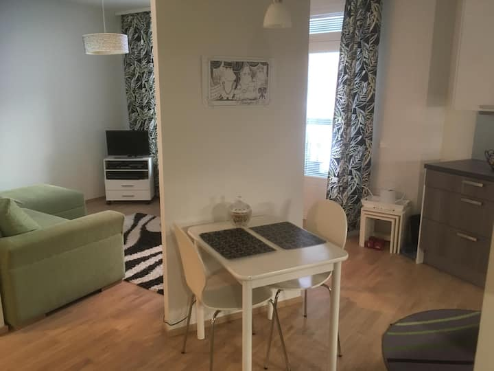 Clean and cozy one-room flat (43m2)!