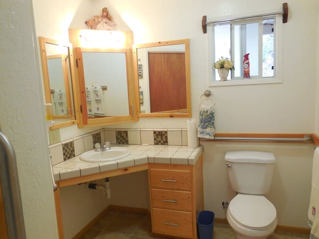 Another photo of the king room bathroom. It has a wheelchair access bathroom sink and shower.