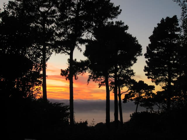 Bella Corona, Ocean View Garden Apartment - Carmel-by-the-Sea - Huoneisto