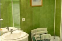 1 salle d'eau