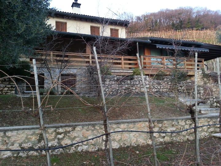 Casa San Gallo-Prosecco Hills