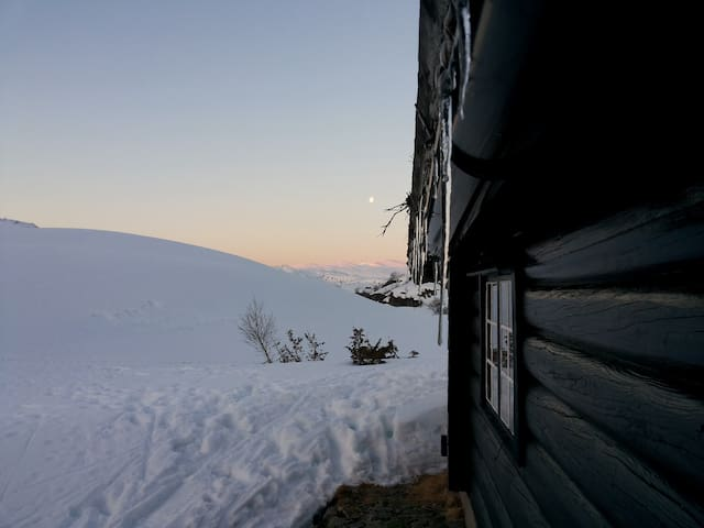 Mountain cabin Sirdal - Lysefjorden - Sirdal - Chalet
