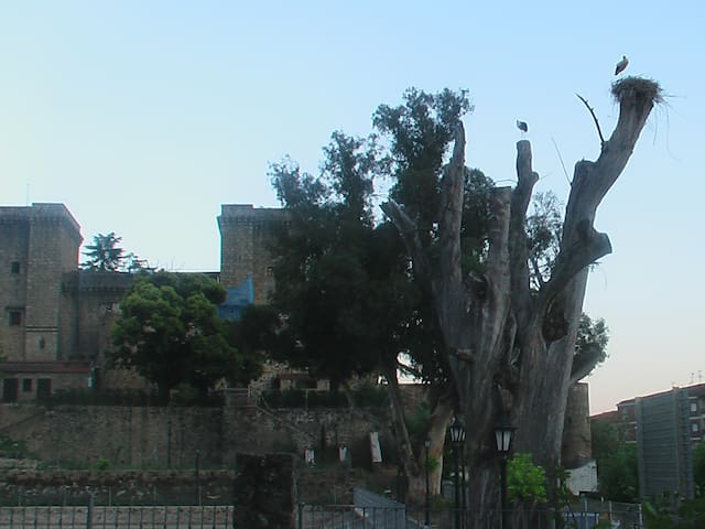 Casa Rita, La Vera, Caceres, Spain - Jarandilla de la Vera - Huoneisto