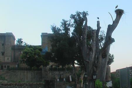 Casa Rita, La Vera, Caceres, Spain - Jarandilla de la Vera - Apartment