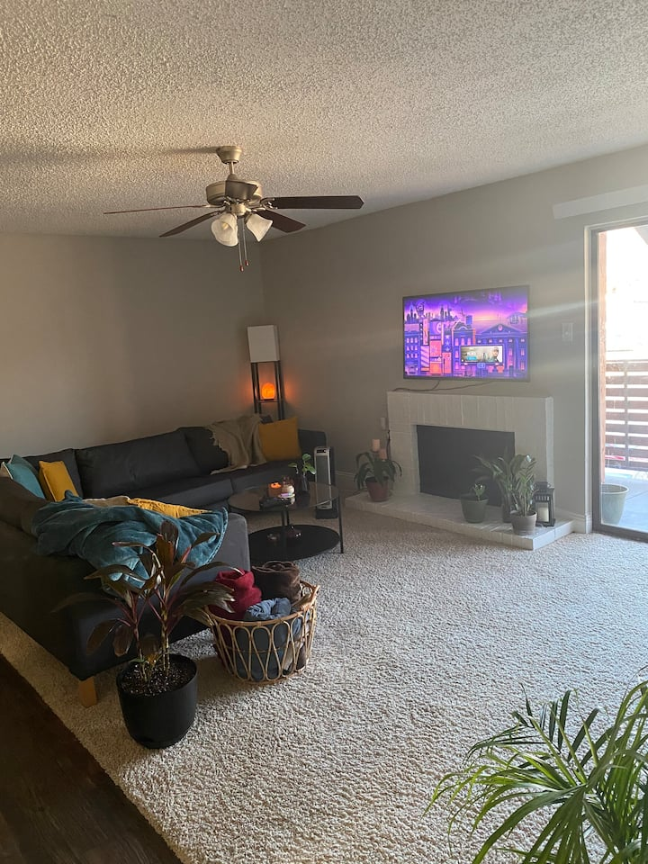 Cozy one bedroom apartment in Arlington