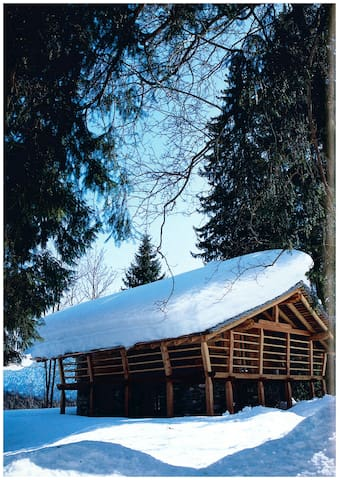 Una baita tra gli alberi - Alagna Valsesia - Blockhütte
