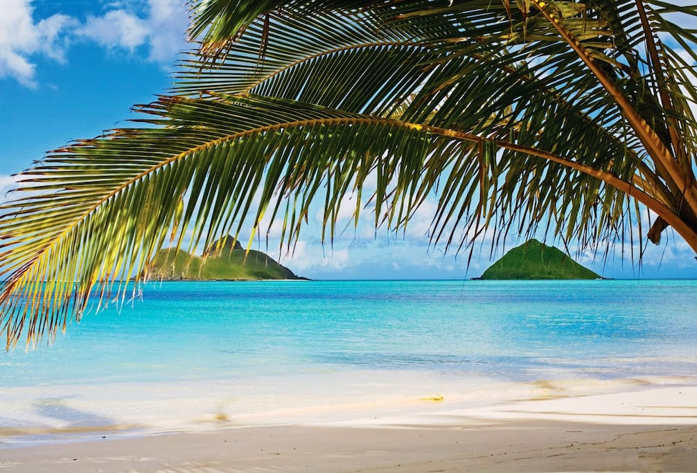 Famous Lanikai beach is a short 5 minute drive away!