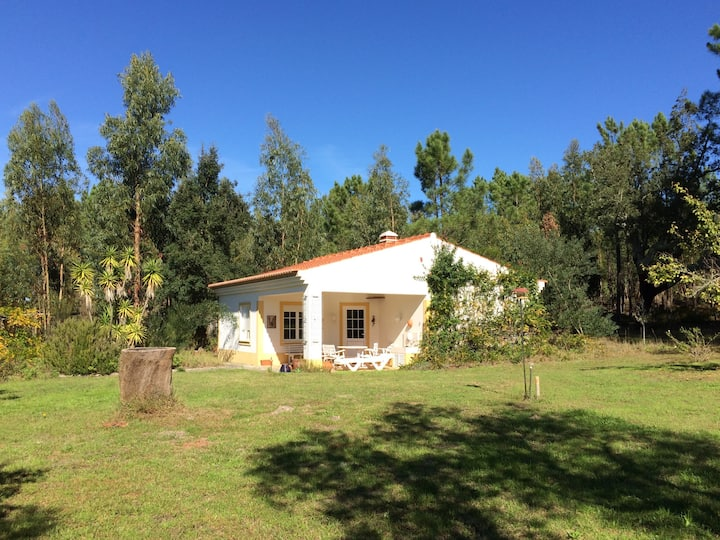 Casa Figueira verde