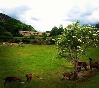 Viu l'entorn - Guardiola de Berguedà