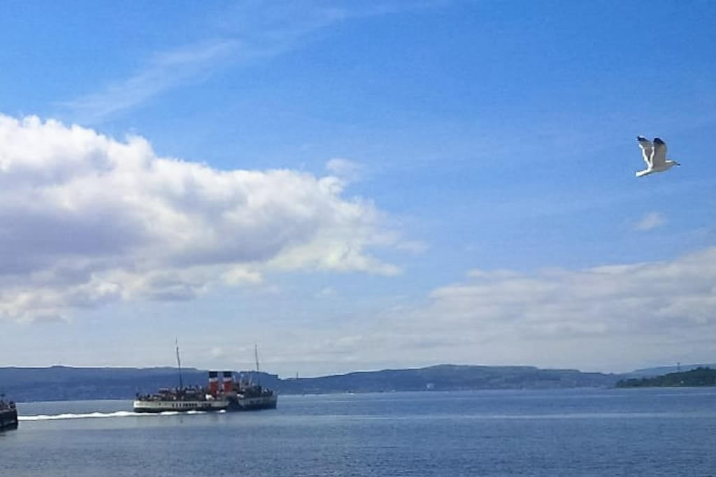 Regular sailings on PS Waverley from Helensburgh