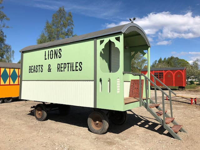 Grand Circus Hotel - The Lion Tamer's Wagon