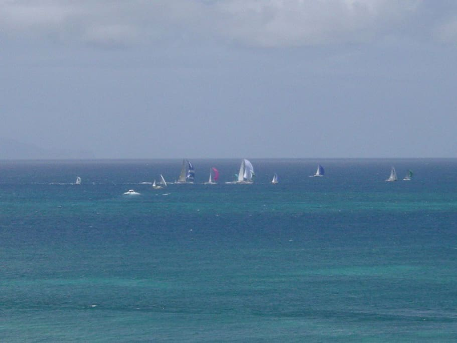 A View from the Deck during Sailing Week