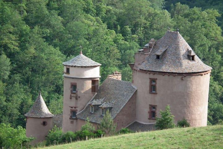 13th & 16th Castle in Aveyron - Villecomtal - Castle