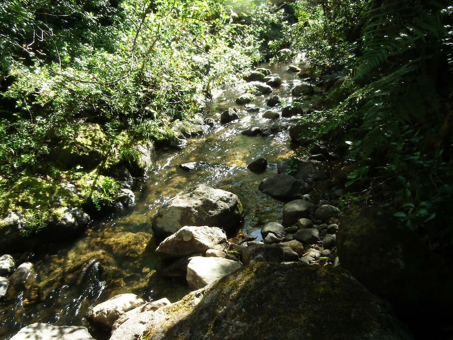 ... and listen to the soothing sound of the stream