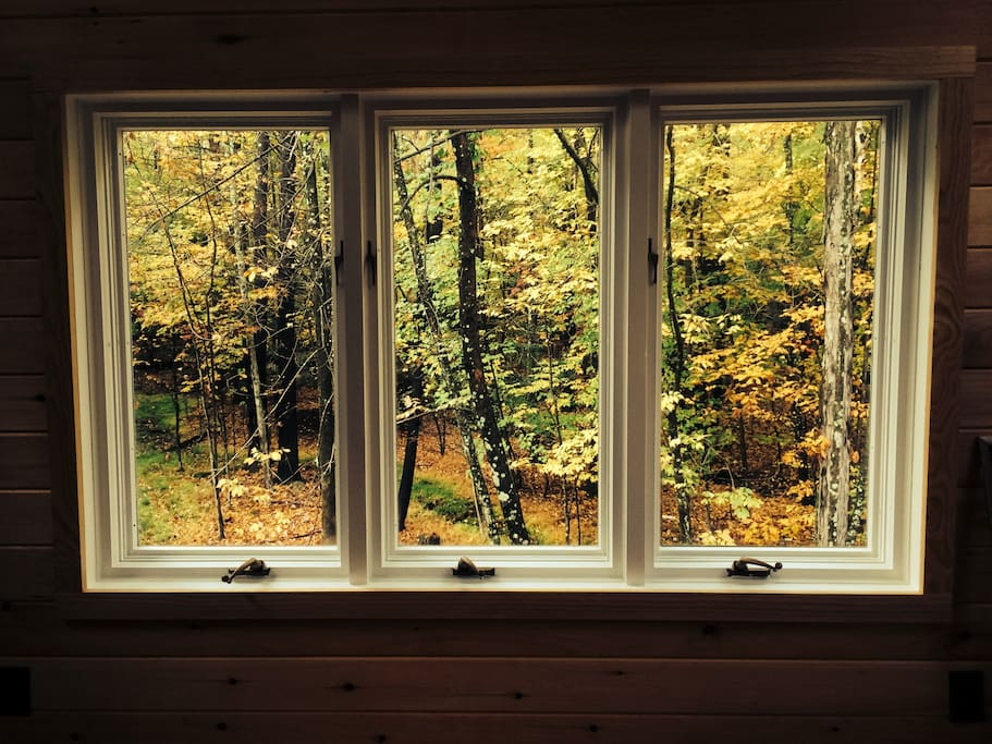 The windows in the master bedroom.