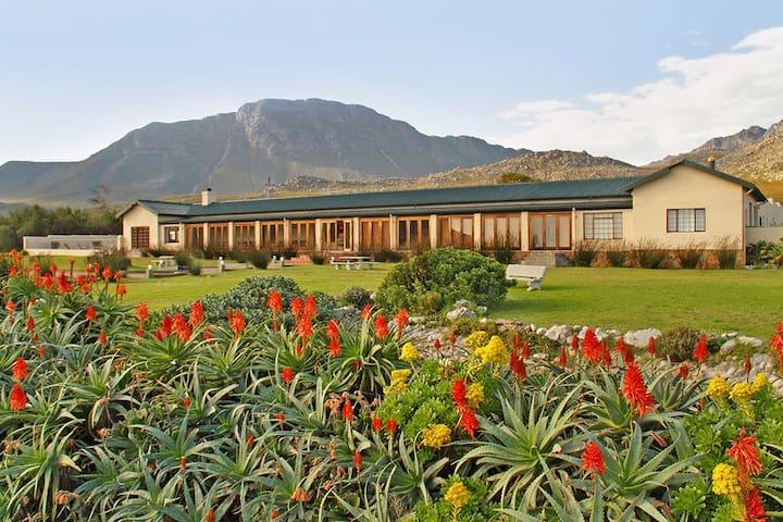 Sea Villa Glen Craig Hotel - Pringle Bay - Bed & Breakfast