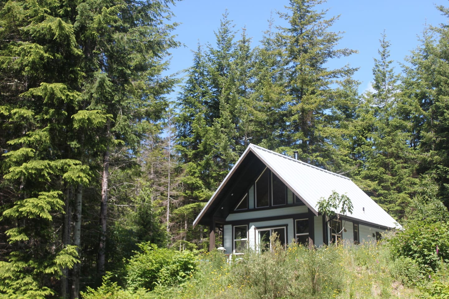 View of the cabin from below. Private and entirely embedded in the wilderness.