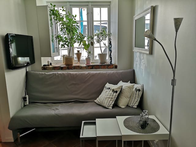 Small well equipped apt  and backyard. Centr Stvgr