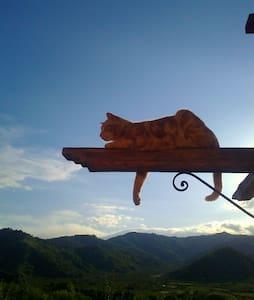 Cosy apartment: view on the Etna - Trappitello