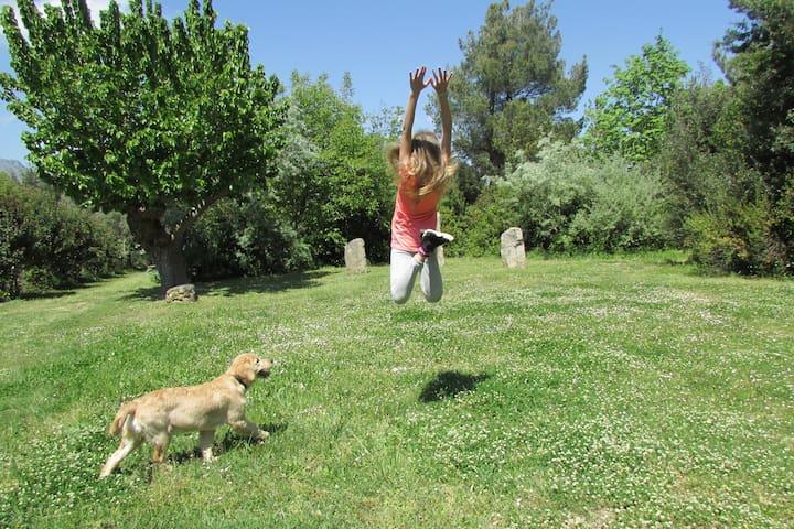 HAPPY CAMPING - Madonna degli Angeli' Gardens